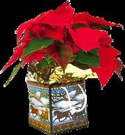 Заказать Деда Мороза +7 (4932) 485222.