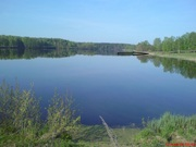 Зем/ участок  на берегу Востринского водохранилища  33 сотки в собств.