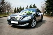 Свадебный кортеж Mercedes-Benz S-Class