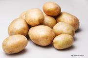 Картофель 3, 5+,  некондиция,  нестандарт